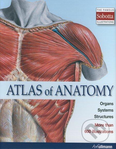Anatomy software free