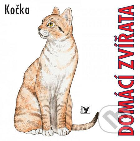 Domácí zvířata: Kočka -