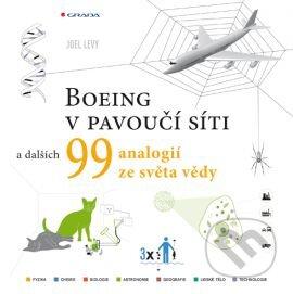 Boeing v pavoučí síti - Joel Levy