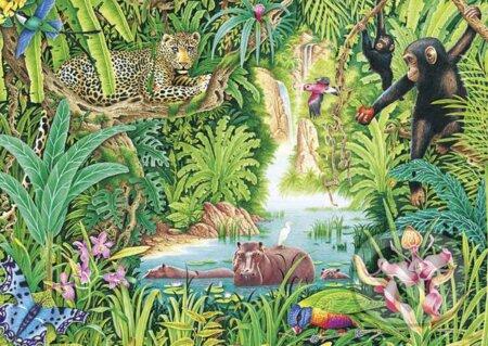 Život v džungli -