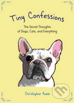Tiny Confessions - Christopher Rozzi