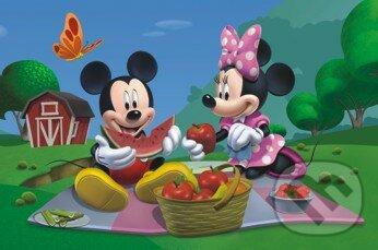 Mickey Mouse na pikniku -