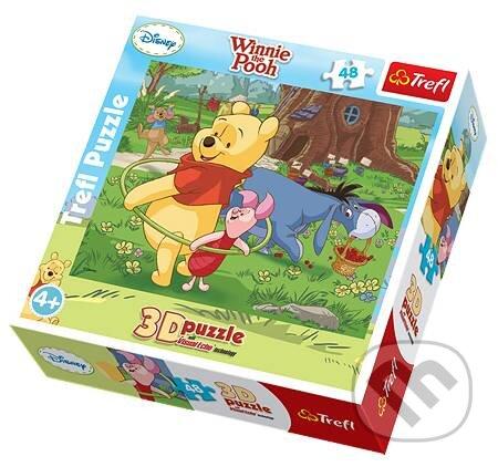 3D Medvídek Pú -