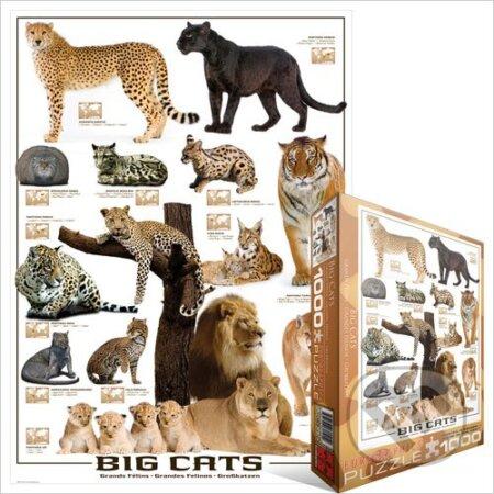 Velké kočky -