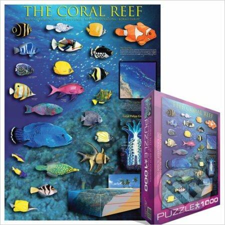 Korálový útes -