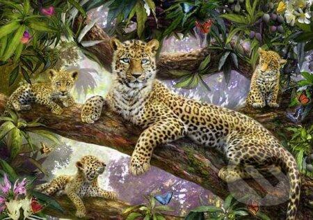 Leopardi -