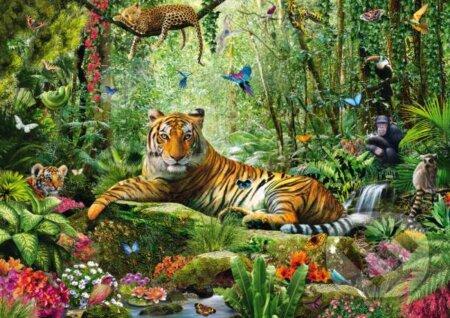 Tiger v džungli -