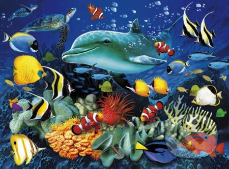 Dolphin Reef 3D -