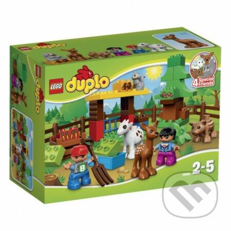 LEGO DUPLO 10582 Lesné zvieratká -