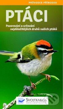 Ptáci -