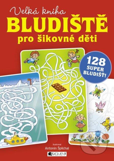Bludiště pro šikovné děti – velká kniha -