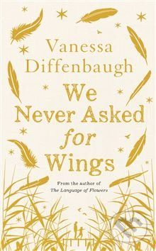 We Never Asked for Wings - Vanessa Diffenbaugh