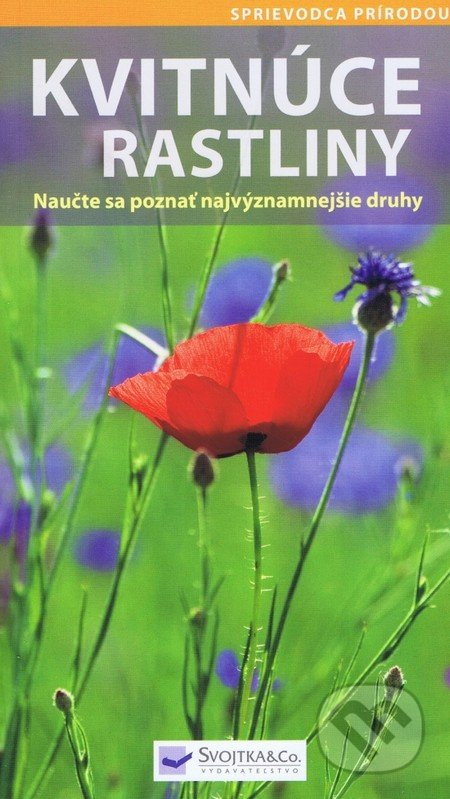 Kvitnúce rastliny -