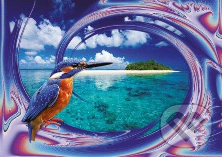 Vtáčik na pláži -