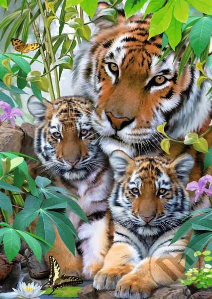 Tigria rodina -