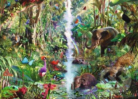 Džungľa -