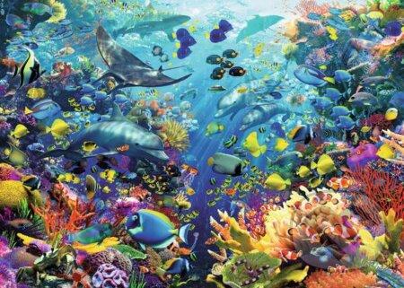 Podmorský svet -