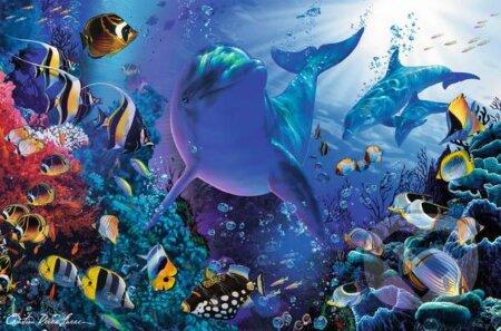 Mihotanie morského sveta -