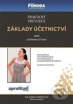 Praktický průvodce základy účetnictví - Dagmar Halabrinová