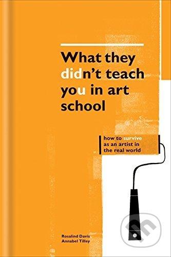 What They Didn\'t Teach You in Art School - Rosalind Davis, Annabel Tilley