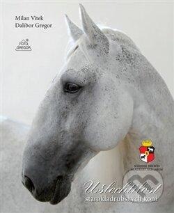 Ušlechtilost starokladrubských koní - Dalibor Gregor