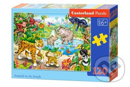 Zvieratá v džungli -