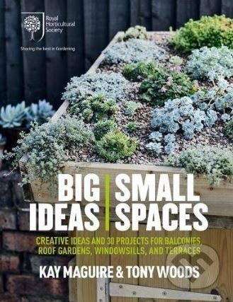 Big Ideas, Small Spaces - Kay Maguire