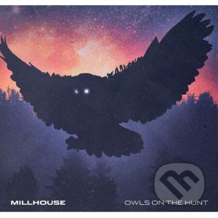 Millhouse: Owls on the hunt - Millhouse