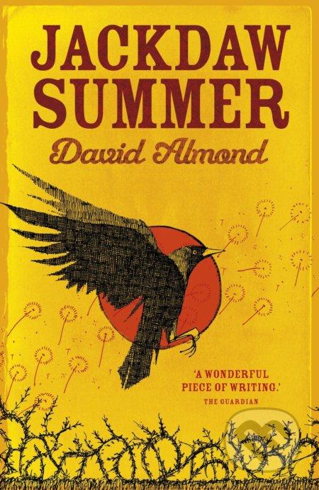 Jackdaw Summer - David Almond