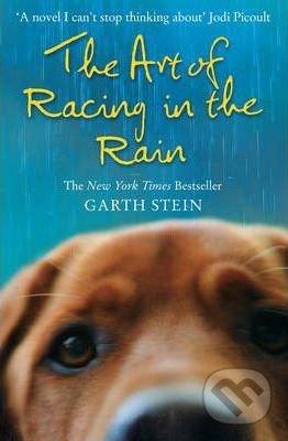 Art of Racing in Rain - Garth Stein