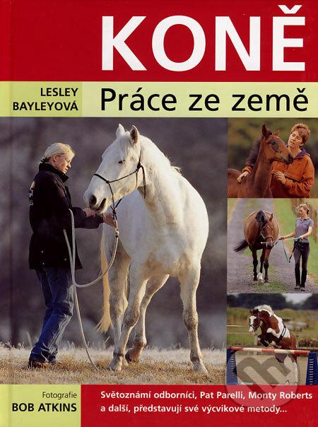 Koně - Lesley Bayleyová