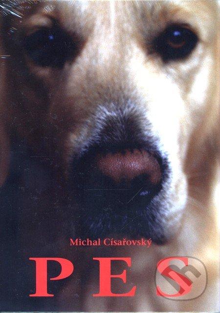 Pes - Michal Císařovský