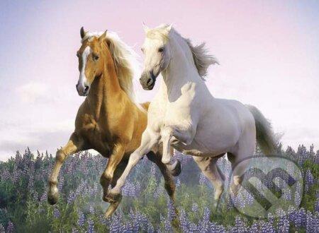 Kone -