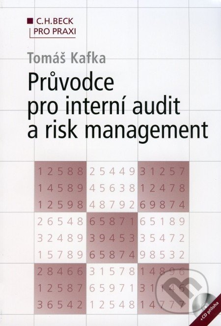 Průvodce pro interní audit a risk management - Tomáš Kafka