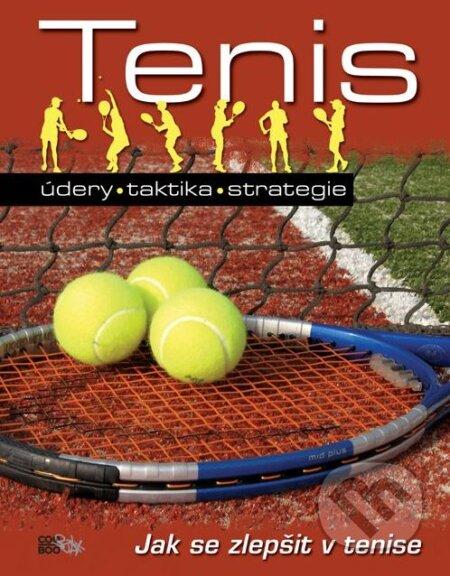 Tenis: údery, taktika, strategie - John Littleford, Andrew Magrath