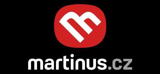 Výsledek obrázku pro martinus